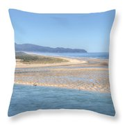 Clam Digging Morning 0200 Throw Pillow