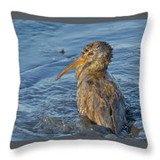 Clapper Rail Throw Pillow