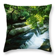 Clare Glens, Co Clare, Ireland Throw Pillow