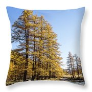 Claree Valley In Autumn - 1 - French Alps Throw Pillow