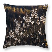 Claree Valley In Autumn - 10 - French Alps Throw Pillow