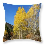 Claree Valley In Autumn - 11 - French Alps Throw Pillow
