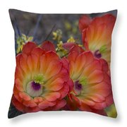 Claret Cup Cactus - Three Of A Kind  Throw Pillow