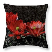 Claret Cups Throw Pillow