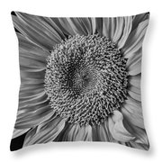 Classic Black And White Sunflower Throw Pillow