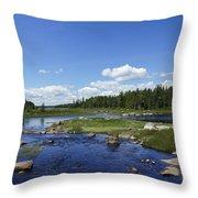 Classic Maine Throw Pillow