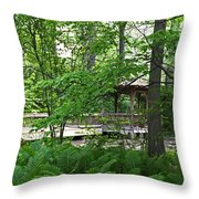 Classic Solitude Throw Pillow