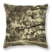Classic Southern Beauty - Evergreen Plantation -sepia Throw Pillow