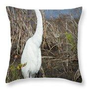Classic White Throw Pillow