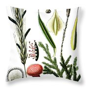 Claviceps Purpures. Recht Wolf's-foot Clubmoss, Stag's- Throw Pillow