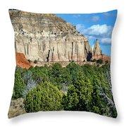 Claystone - Sandstone - Kodachrome Basin Throw Pillow