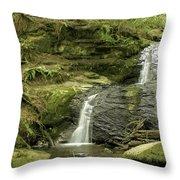 Clayton Beach Falls Throw Pillow