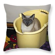 Cleaning Cat Throw Pillow
