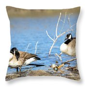 Cleaning On Debris Throw Pillow by Steven Santamour