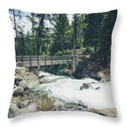Cleanse The Palette Throw Pillow by Margaret Pitcher