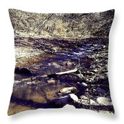 Cleansing Stream Throw Pillow