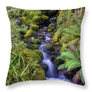 Cleansing The Soul Throw Pillow