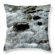 Clear Creek Throw Pillow