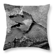 Clear Creek Greenway Two Throw Pillow