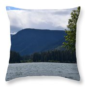 Clear Lake View Throw Pillow