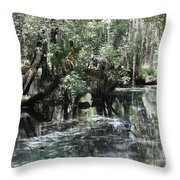 Clear Lithia Springs Throw Pillow