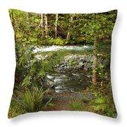 Clear Mountain Stream Throw Pillow