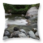 Clear Rapids Throw Pillow