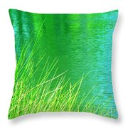 Clear Sighted Throw Pillow