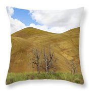 Clear Sky At Painted Hills Throw Pillow