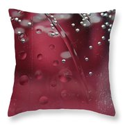 Clear Water IIi Throw Pillow