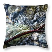 Clear Water Level With Twigs Throw Pillow
