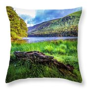 Clear Waters Of Glendalough Throw Pillow