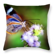 Clear Wings Throw Pillow