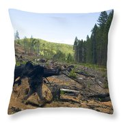 Clearcut Logging Site Throw Pillow
