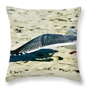 Cleared For Take-off Throw Pillow