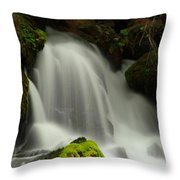 Clearwater Falls 1 Throw Pillow
