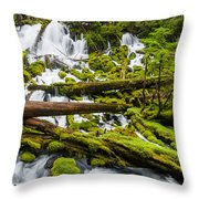 Clearwater Falls And Rapids Throw Pillow