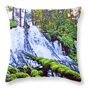 Clearwater Falls, Highway 138, Umpqua National Forest, Oregon Throw Pillow