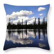 Clearwater Reflections Throw Pillow
