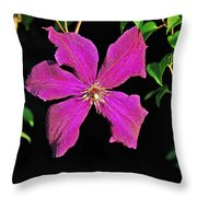 Clematis 2598 Throw Pillow