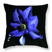 Clematis 3 Throw Pillow