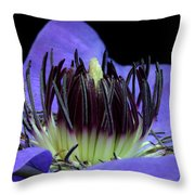 Clematis 8 Throw Pillow