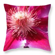 Clematis Bloom.. Throw Pillow