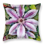 Clematis Camille Throw Pillow