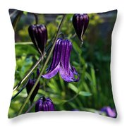 Clematis Flower Blossoms Throw Pillow
