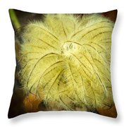 Clematis Flower Head In Fall Throw Pillow