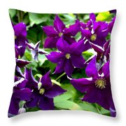 Clematis Flowers Throw Pillow by Corey Ford