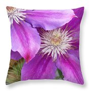 Clematis Flowers Throw Pillow
