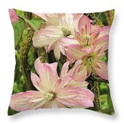 Clematis Montana Marjorie 1060  Throw Pillow