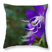Clematis On The Side Throw Pillow